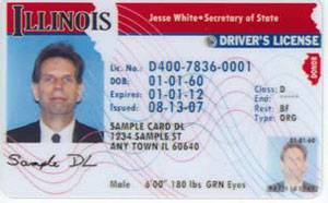 Sample Illinois driver's license