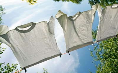 Photo of T-shirts on clothesline