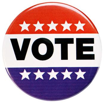 Photo of VOTE button
