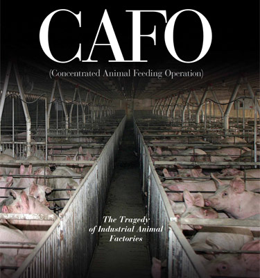 "Book cover of ""CAFO (Concentrated Animal Feeding Operation) The Tragedy of Industrial Animal Factories"""