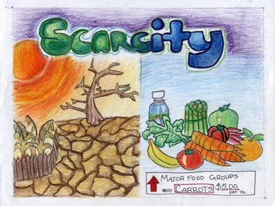 Joyce Z., a fifth-grader at Spring Brook Elementary School in Naperville, was a 2011 state winner for this poster illustrating the concept of scarcity.