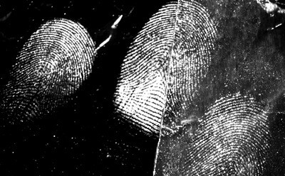 Latent fingermarks from a male donor developed on aluminium foil.<br />(Image provided by Xanthe Spindler)