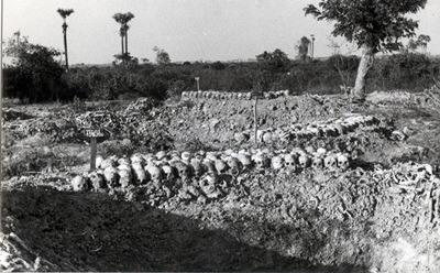 Mass grave in Cambodia