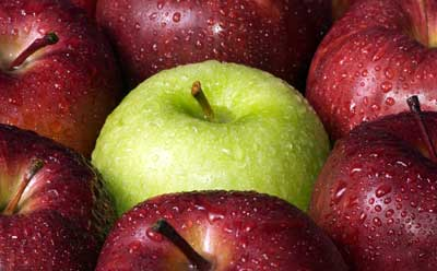 Photo of Golden Delicious apple surrounded by red apples