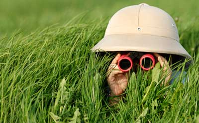 Photo of explorer in tall grass with binoculars