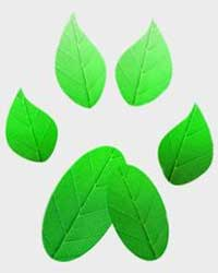 Logo of NIU's Green Paws Environmental Alliance