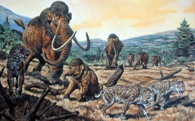 Illustration of a smilodon with elephants