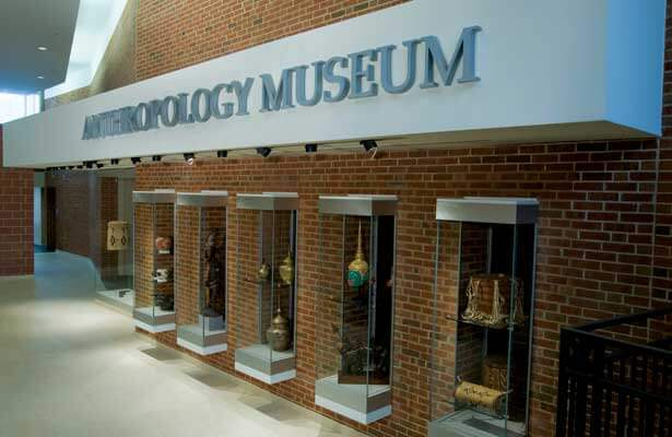 The Anthropology Museum