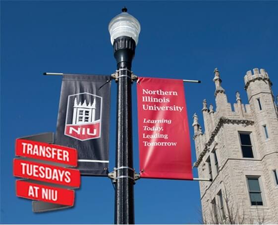 Super Transfer Tuesdays!