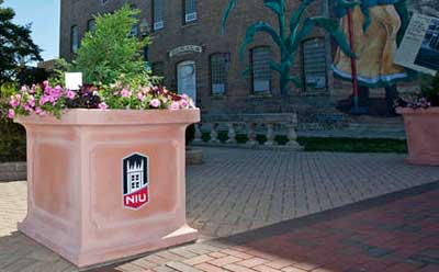 Photo of a Communiversity in Bloom planter in downtown DeKalb.