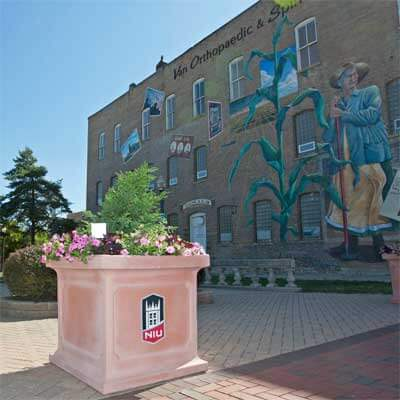 Planters containing flowers and small shrubs were placed in and around downtown DeKalb and throughout the NIU campus in June 2012 as a part of an initiative called Communiversity in Bloom.