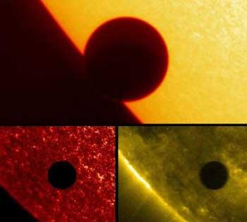NASA image of the Transit of Venus
