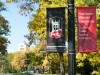 Learning Today, Leading Tomorrow: photo of NIU banners on campus