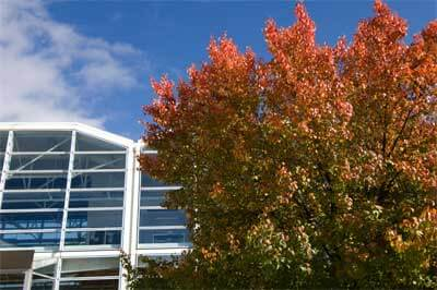 A photo of the Engineering Building in autumn