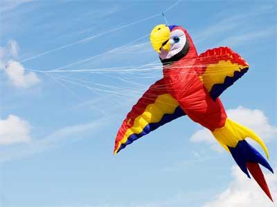 DeKalb Kite Fest 2011