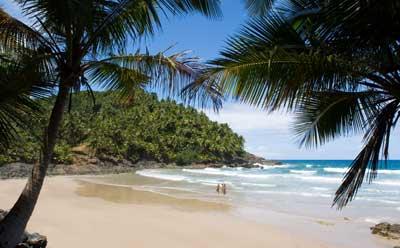 Photo of a tropical beach
