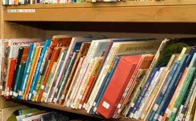 A photo of books in the Children's Literature Collection of NIU's Gabel Hall.