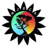 NIU Counseling Association logo