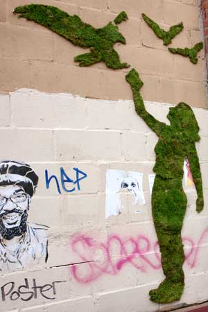 "Stenciled moss graffiti by ""green graffiti"" artist Edina Tokodi. Image courtesy of Edina Tokodi."