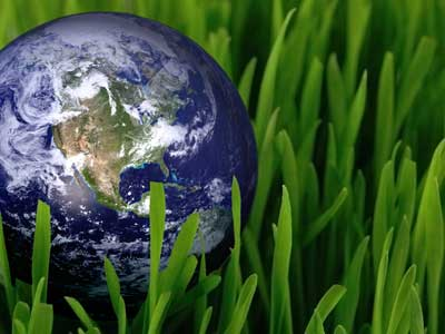 Photo of a globe marble in grass