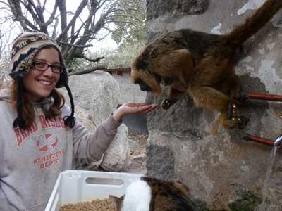 2012 USOAR recipient Sarah Stuebing studies facial expressions of black howler monkeys in Argentina.