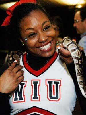 A Huskie cheerleader and a snake count down to 2013 at Jungle Island in Florida.