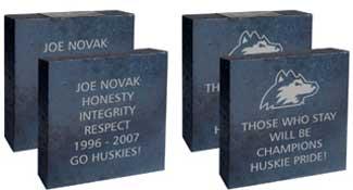 Examples of Legacy bricks