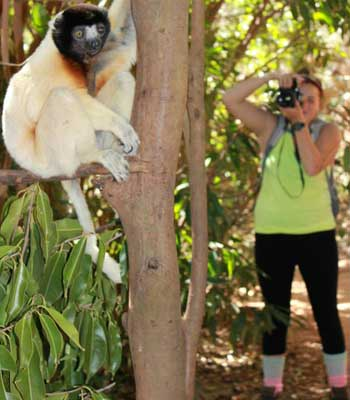 Students practiced data collection techniques on free-ranging captive lemurs before heading to the forest.