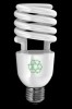 Photo of an energy-efficient light bulb