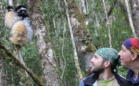 Mitch Irwin and Karen Samond observe a lemur in Madagascar.
