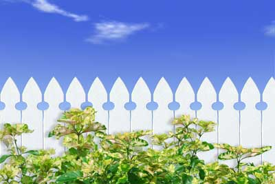 Photo of a white picket fence with blue skies behind
