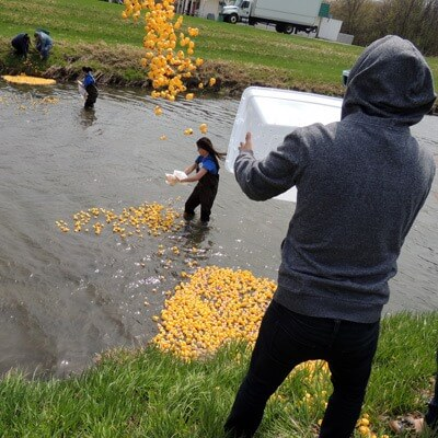 APO members launch the ducks into the Kishwaukee.