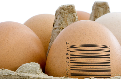 Photo of a barcode on eggs in a carton