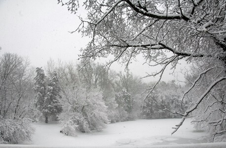 WINTER SCENE 1-x