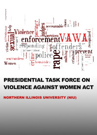VAWA-Task-Force-Report
