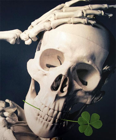 Photo of a skull and a clover