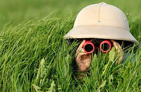 Photo of an explorer in the tall grass with binoculars