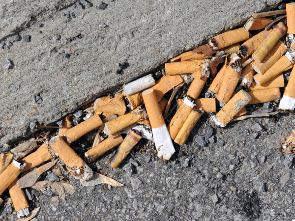 Cigarette butts discarded on the curb