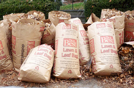 Photo of autumn leaves in bags