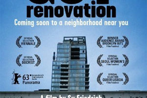 "DVD cover of ""Gut Renovation"""