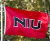 Photo of an NIU flag