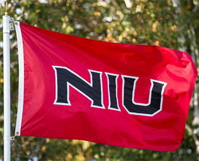 Photo of an NIU flag