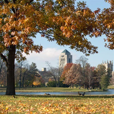 NIU in fall