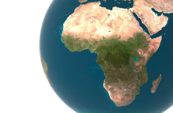africa-centerpiece