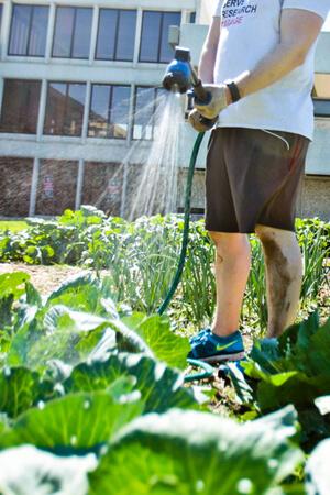 gardens-homepage-portrait